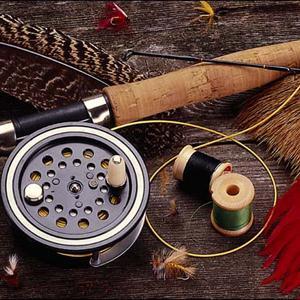 Охотничьи и рыболовные магазины Шемурши